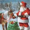 Servietter, str. 33x33 cm, Julenisse med reinsdyr, 20stk.