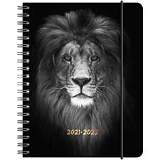 Kalender A6 Lion 2021/2022 Almanacksförlaget