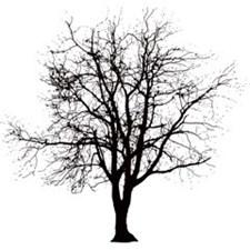 Broste Branch Servietit 33x33 cm Musta