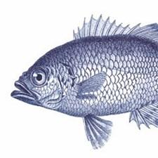 Broste Servett 33x33 cm Fisk Blå