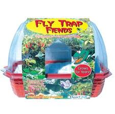 Fly Traps Friends Terrarium