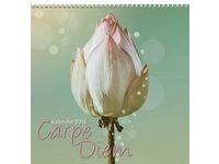 Carpe Diem - 1721