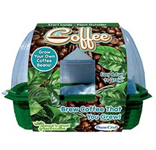 Grow Your Own Coffe