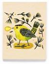 Kort Dubbelt med Kuvert 11,5x16 cm Green Bird