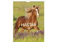 Stora Hästkalendern -1776