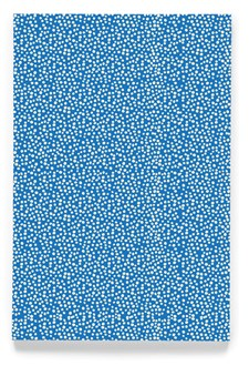 Tiny dot blue 4x6´ workbook