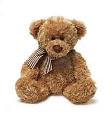 Nalle Ville Stor, Teddykompaniet