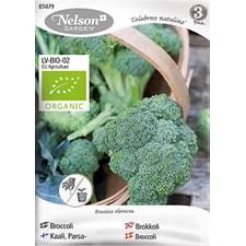 Broccoli, Calabrese natalino, Organic