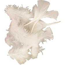 Dun, str. 7-8 cm, 50 g, hvit