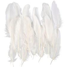 Indianerfjær, ca. 15 cm, 70 stk., hvit