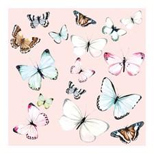 Kort med Kuvert Miss Butterfly Black Olive