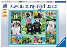 Puppy Love, Pussel 500 bitar, Ravensburger