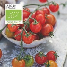 Tomat, Körsb.-, Sweetbaby, Organic