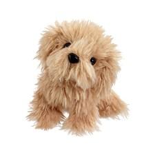 Scruffy Husdjur, Brun Hund, Scruffies