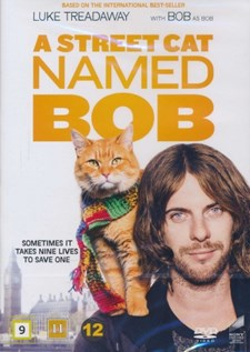 Gatukatten Bob