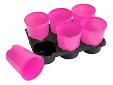 Kryddkrukor 12st, rosa
