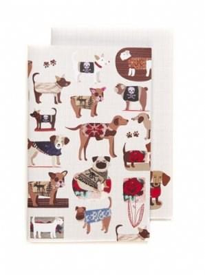 Dog Sweaters, Duo