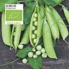Ärt, Märg-, Karina, Organic