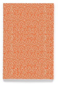 Tiny dot orange 4x6´ workbook